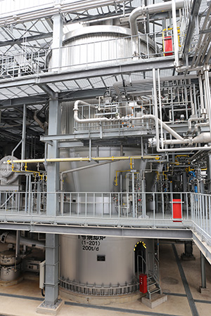Complete combustion in fluidized bed zone Degradation of odorous component from sludge N2O emissions are reduced by high temperature combustion